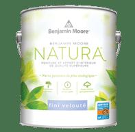 Benjamin Moore - Natura Velour 513